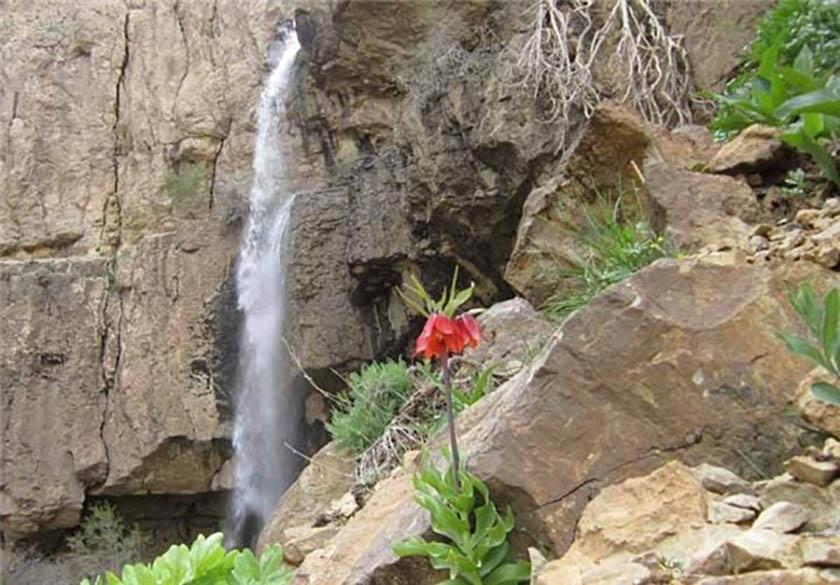آبشار تنگ مو